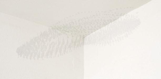 Kati Gausmann: 'flow (15/06)'