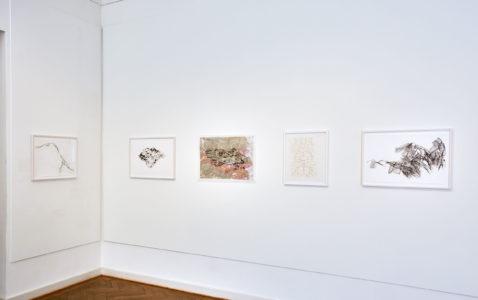Kati Gausmann: Works from the series 'drift', 'mountain print' und 'dancing dough'