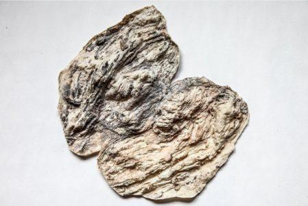 Kati Gausmann: mountain print (17/36/00)